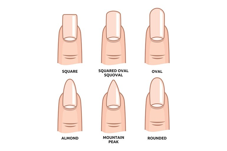 Different Nail Shapes - Calyxta